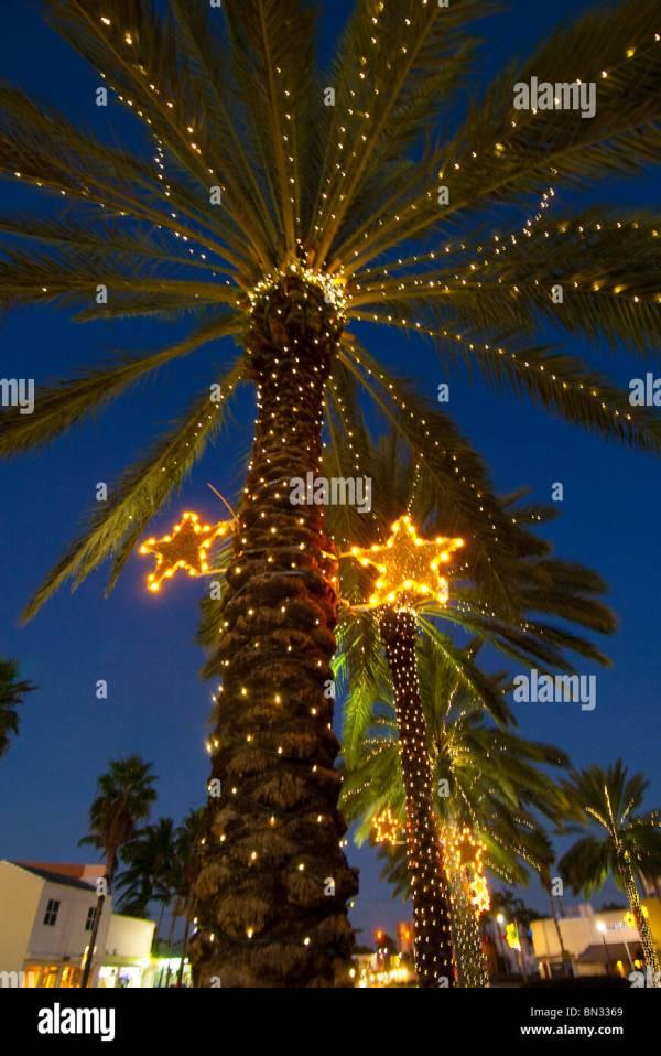 christmas lights miami # 78