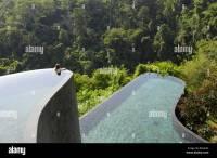 Ubud Hanging Gardens Pool Bali Indonesia - Garden Ftempo