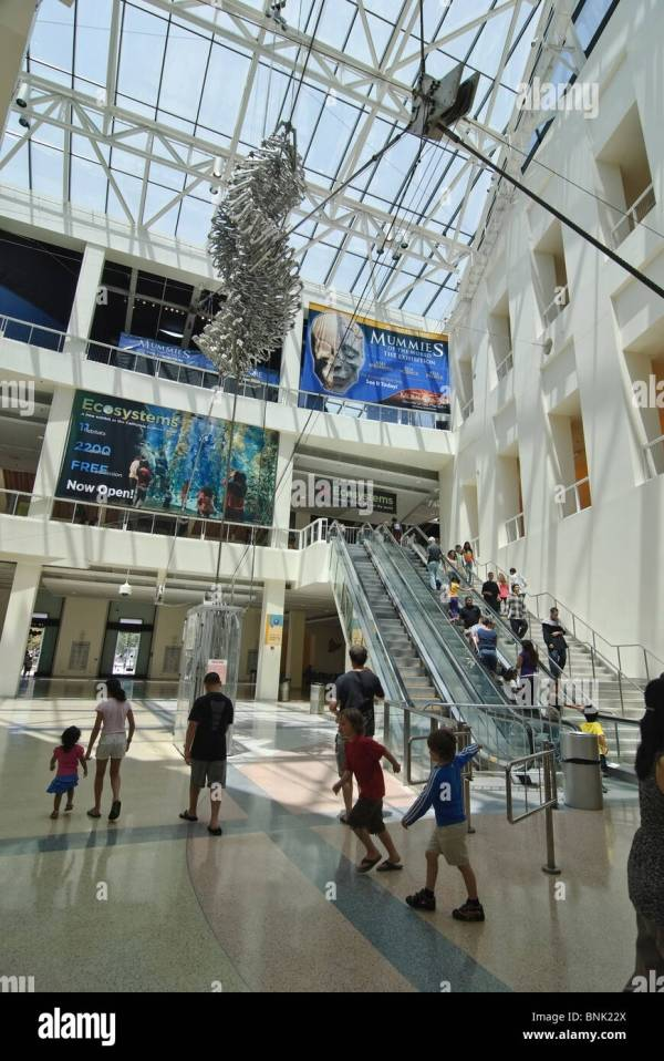 Interior Lobby Of California Science Center In Los