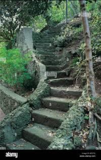 Winding stone steps in a terraced garden Stock Photo ...
