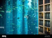 Hotel Berlin Aquarium