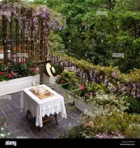 Looking down on small paved balcony with wisteria on ...