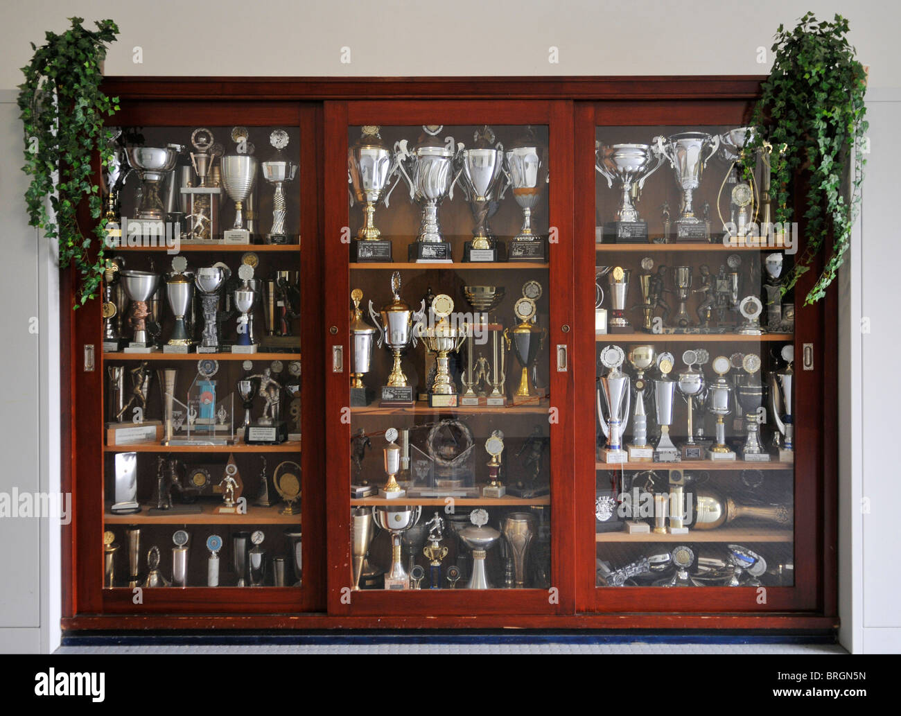 Trophy Cabinet Stock Photos  Trophy Cabinet Stock Images