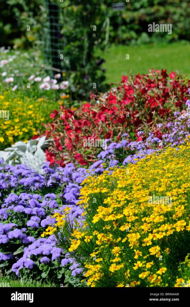 Perennial border flowers home design ideas perennial border garden plants mightylinksfo