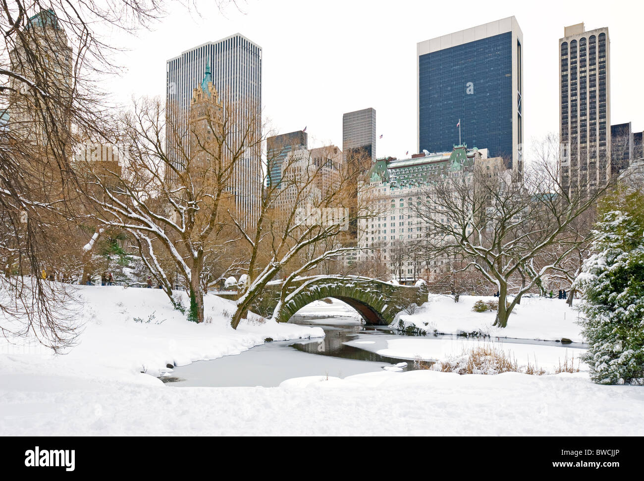 Winter Snow In Central Park New York City With The Plaza