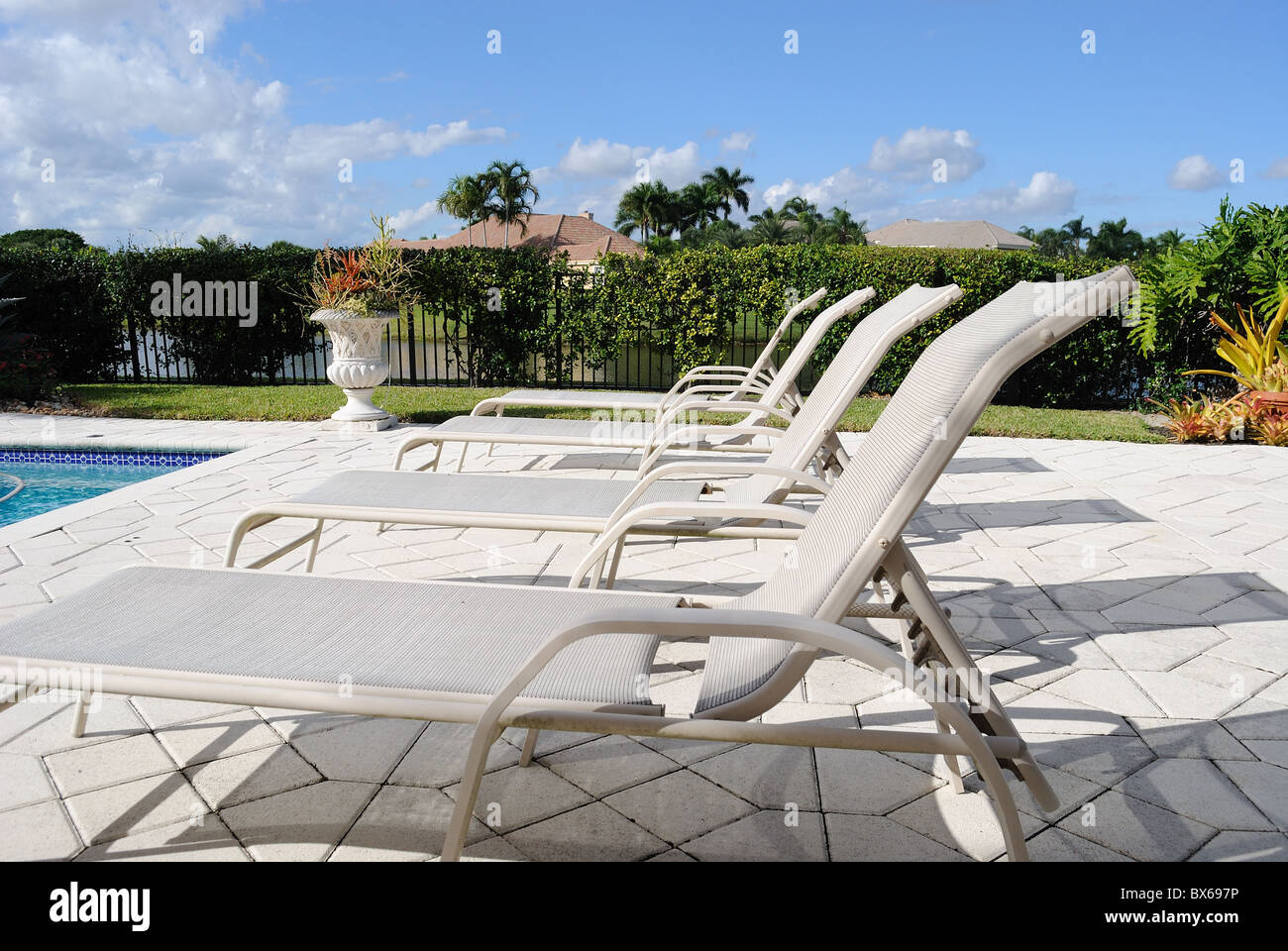poolside lounge chairs ivory chair covers for weddings stock photo 33330410 alamy