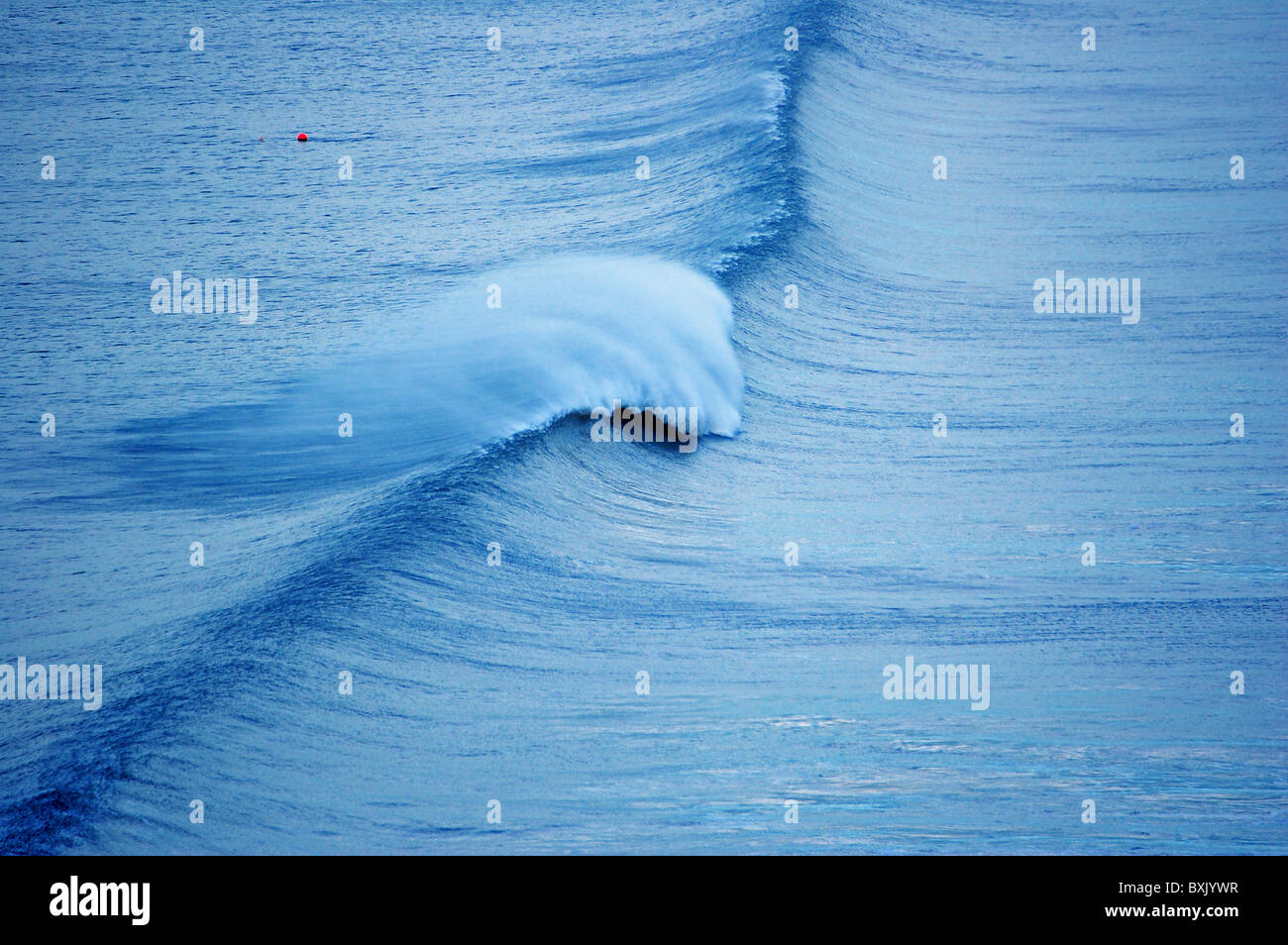 There Are Many Types Of Ocean Waves Waves Differ From