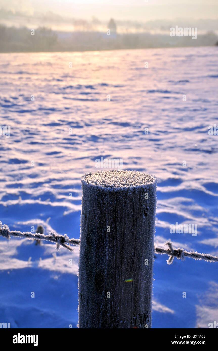 Oak Fence Posts Gloucestershire