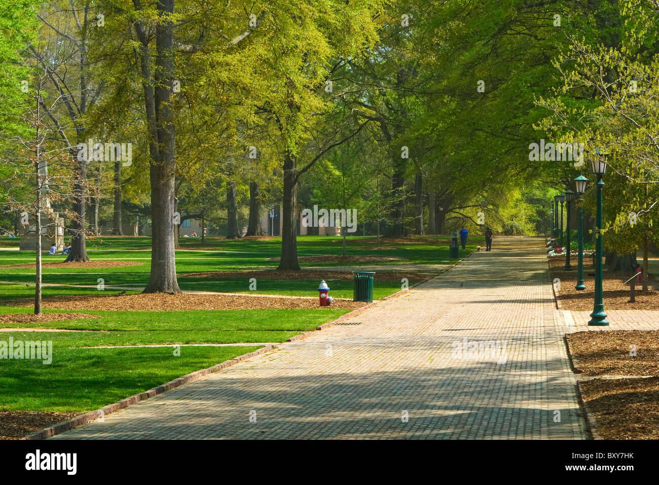 Campus University South Carolina Horseshoe