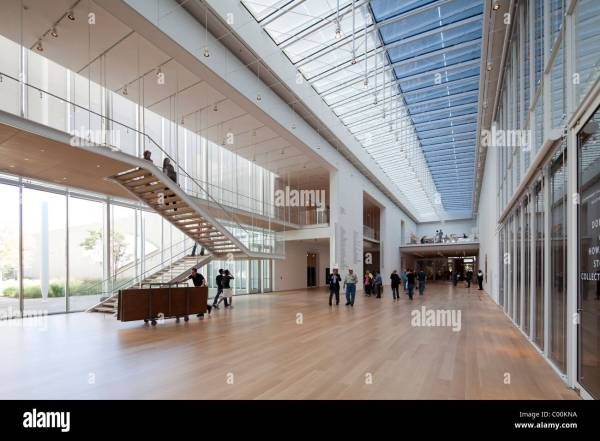 Art Institute Of Chicago Modern Wing Designed Renzo Piano Opened Stock 34436230 - Alamy