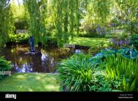 An ornamental garden pond in an English country garden ...
