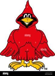 Cartoon Cardinal School Mascot Clip Art Stock Photo Alamy