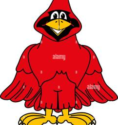 cartoon cardinal school mascot clip art [ 1012 x 1390 Pixel ]