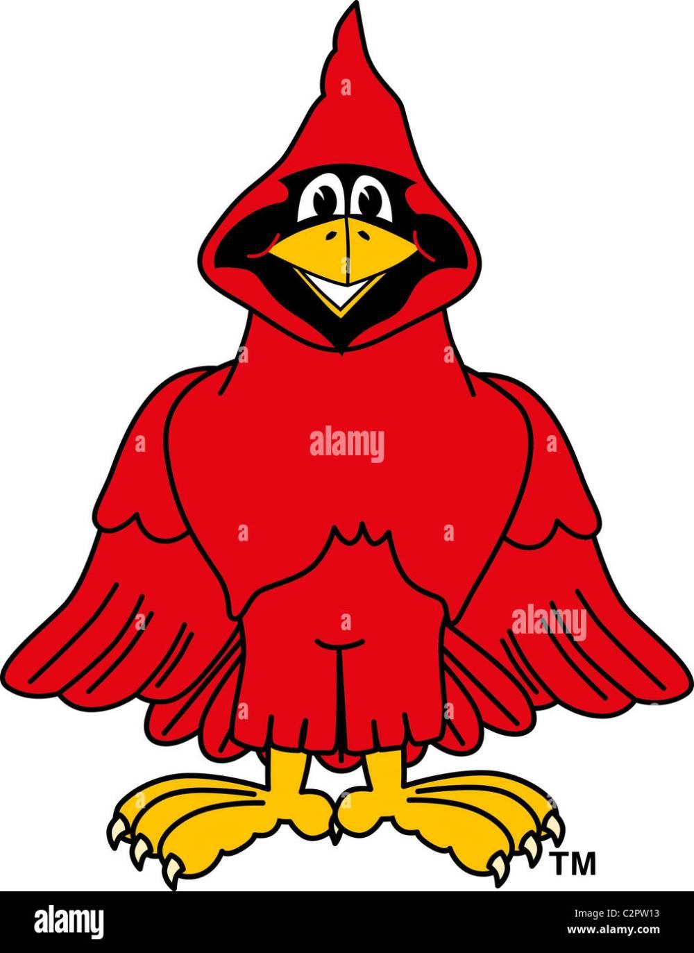 medium resolution of cartoon cardinal school mascot clip art