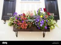 Window Box Flowers Stock Photos & Window Box Flowers Stock ...