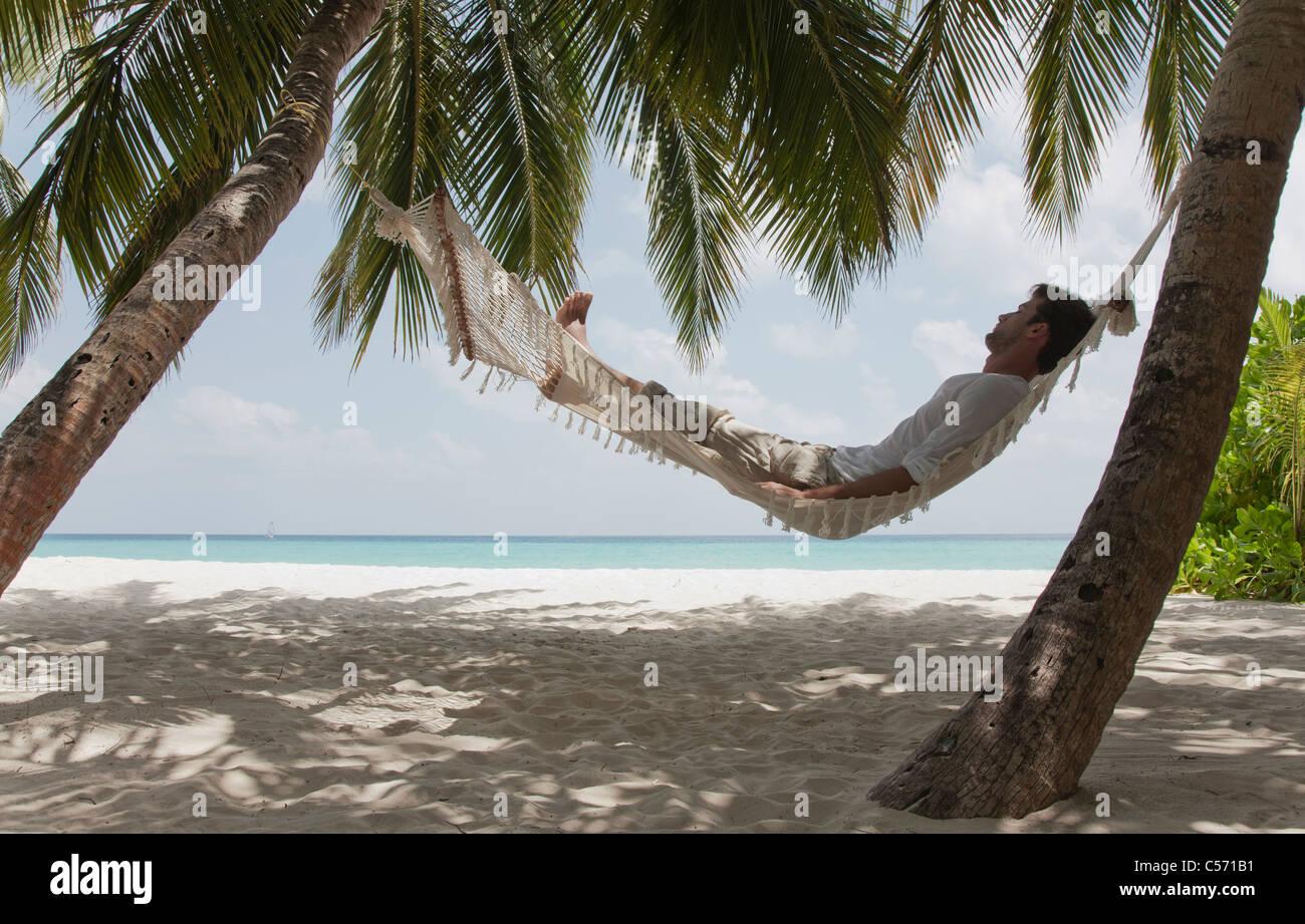 Tropical Beach Hammock Stock Photos Amp Tropical Beach