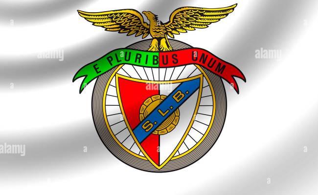 Sl Benfica Logo Flag Symbol Emblem Icon Stock Photo