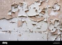 Flaking Paint On Interior Walls. peeling wall free ...