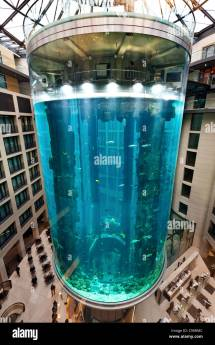 Aquadom Largest Cylindrical Aquarium In Lobby Of