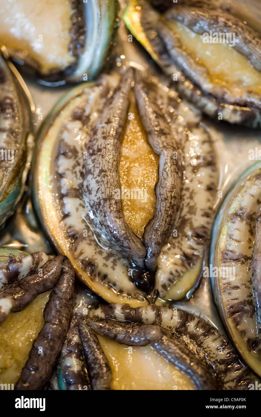 Abalone on sale at Jagalchi Fish Market Busan South Korea Stock Photo. Royalty Free Image: 40183939 - Alamy