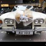 White Rolls Royce Wedding Car With Grille Cat Soft Toys In Hong Kong Stock Photo Alamy
