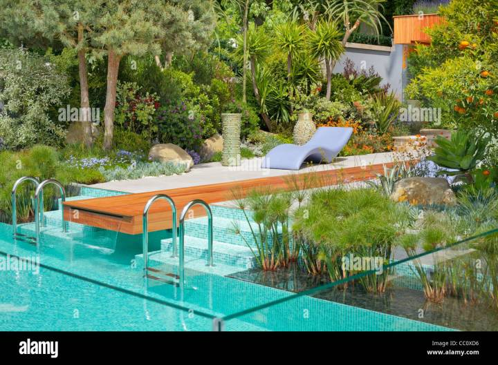 contemporary garden design with a swimming pool in