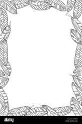Leaf Border Black and White Stock Photos & Images Alamy