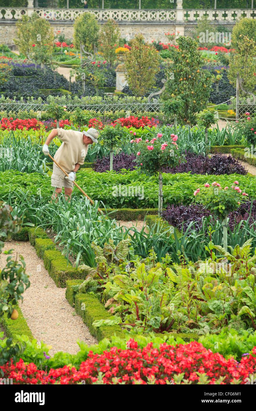 Un Jardin à La Française : jardin, française, France,, Gardens, Castle, Villandry,, Gardeners, Stock, Photo, Alamy