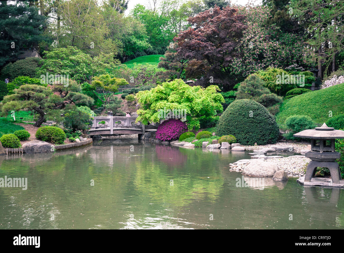 This visitor's guide has everything you need to help you plan your visit to the brooklyn botanical gardens; Japanese Hill And Pond Garden In The Brooklyn Botanic Garden Nyc Usa Stock Photo Alamy
