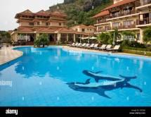 Dolphin Tiled Swimming Pool Sunrise Resort