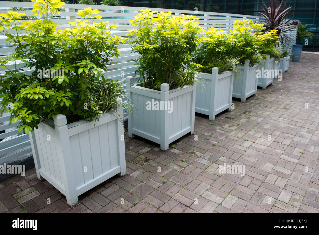 Wood Squares Painted Garden