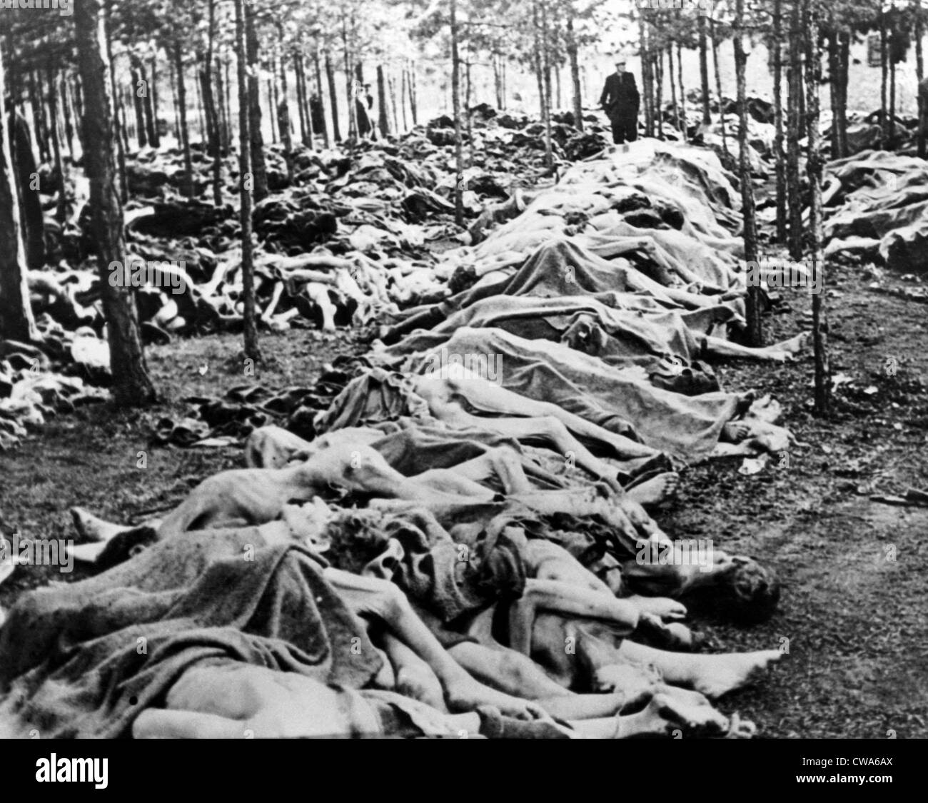 Bergen Belsen Concentration Camp Conditions
