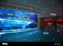Shark Tank Golden Nugget Las Vegas