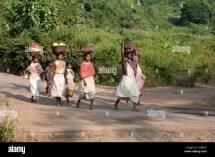 Dunguria Kondh Tribeswomen Walking Barefoot Market