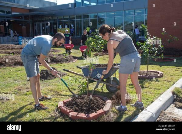volunteers work landscaping