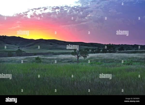 America Great Plains Lone Tree Sunset Landscape Grassland Stock 52173781 - Alamy