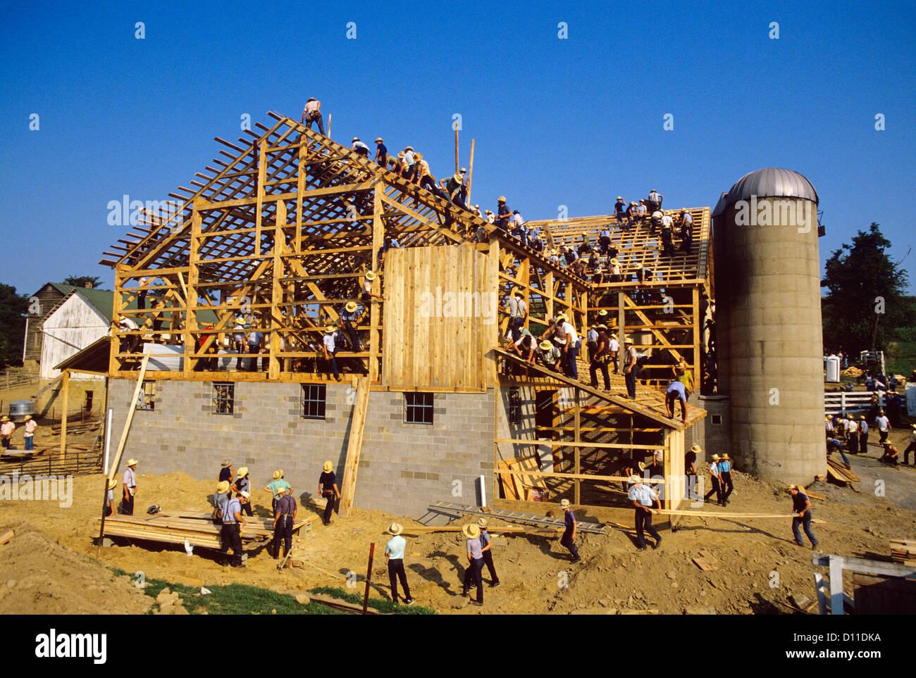 amish barn raising stock