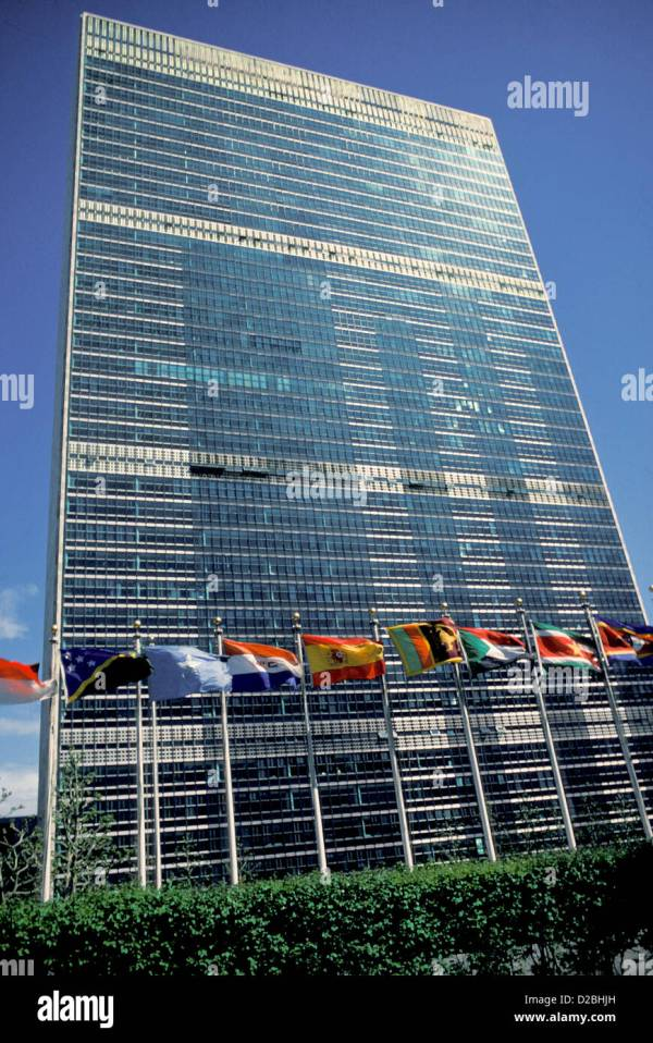 United Nations Flags Stock &
