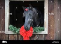 Horse Barn Christmas Decorations | www.indiepedia.org