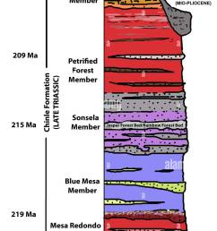 geological stratigraphy diagram petrified forest national park [ 926 x 1390 Pixel ]