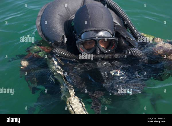 Navy Seal Combat Swimmer Stock 54658181 - Alamy