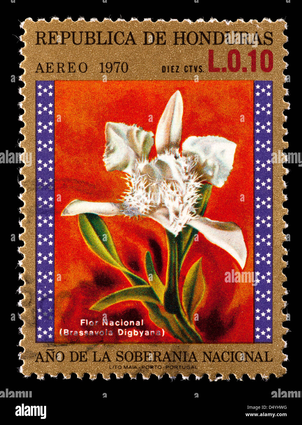 National Flower Of Portugal : national, flower, portugal, Postage, Stamp, Honduras, Depicting, National, Flower,, Orchid, Stock, Photo, Alamy