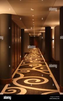 Modern Hotel Corridor Carpet Design