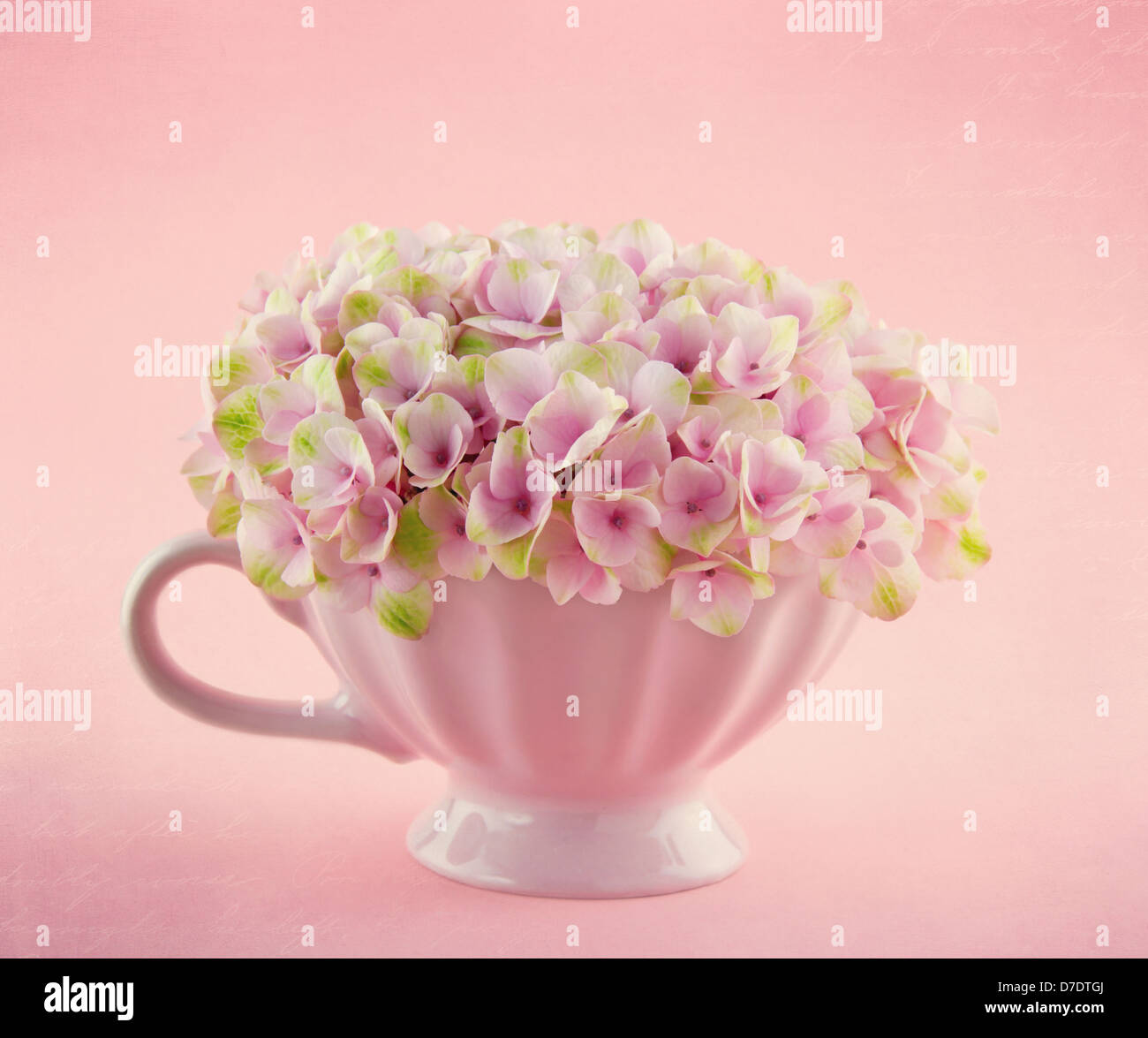 Pink Hydrangea Flowers In A Shabby Chic Mug On Pastel