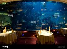 Burj Al Arab Hotel Aquarium Stock &