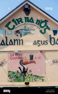 Painted Guinness mural wall art with toucan balancing pint ...