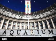 London Aquarium Stock &