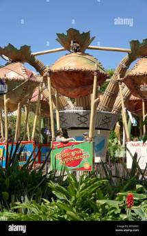 Disneyland Resort California Stock &