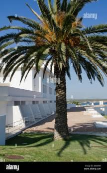 Luxury Hotel Memmo Baleeira With Palm Tree In Sagres