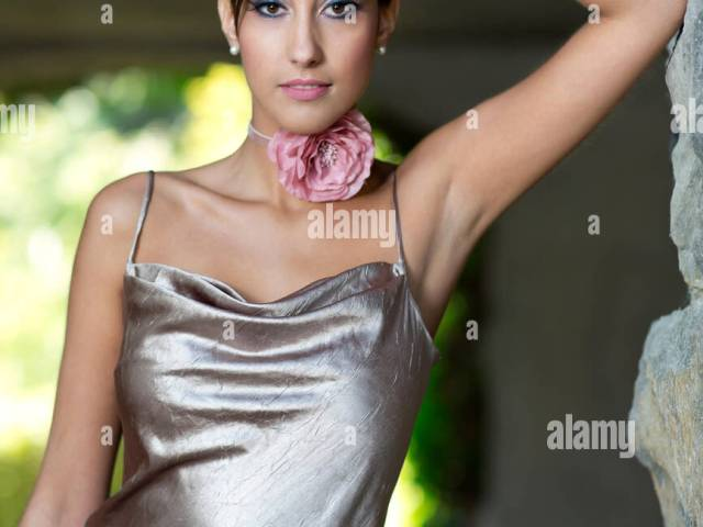 young woman with an updo hairstyle, silvery evening gown, posing